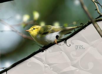 gres by imrik