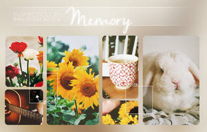 Memory.PSD by Inspirecolors