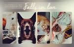 Falls in love .PSD