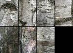 Birch Bark Texture Pack