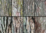 Willow Bark Texture Pack