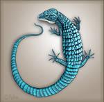 Blue Alligator Lizard by Reptangle