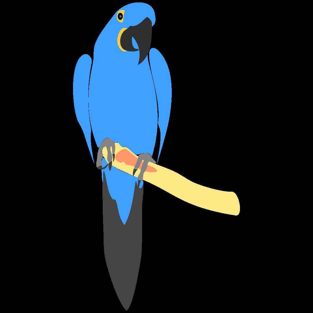 Blue Macaw Drawing Hyacinth Macaw by Kopa...