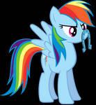 Rainbow Dash's mustache...