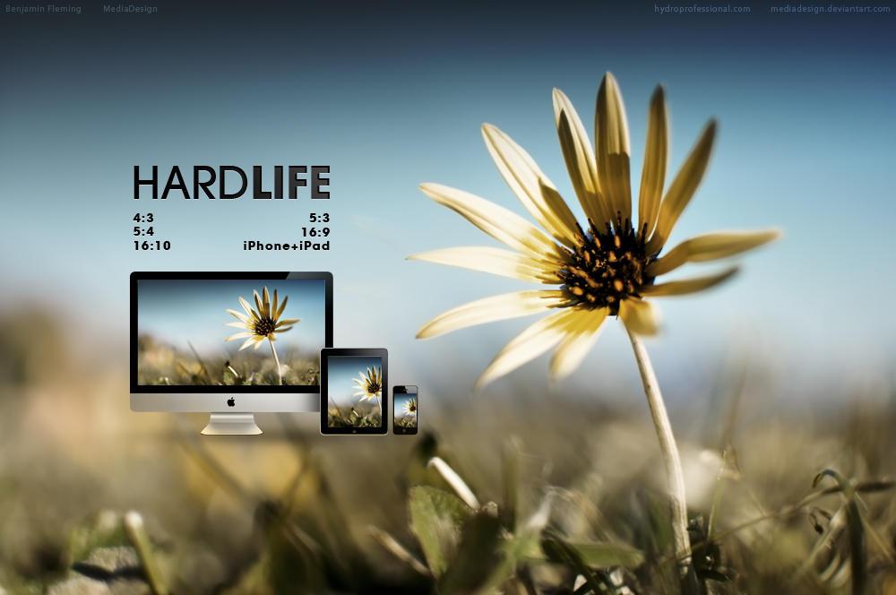 Hard Life Wallpaper by MediaDesign