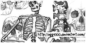 egg9700201104 by egg9700