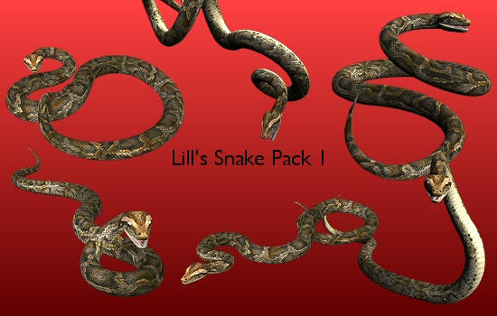 Snake Pack 1 by Lill-stock
