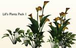 Plants Pack 1