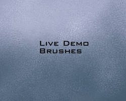 Demo Video Brushes by Rahll
