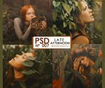 PSD 007 - Late Afternoon