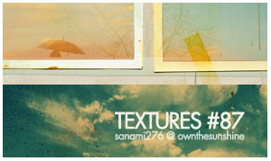 textures 87 by Sanami276