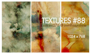 textures 88 by Sanami276