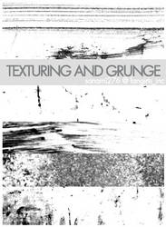 texturing and grunge brushes by Sanami276