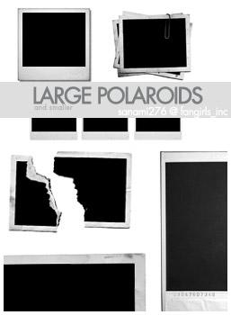 Large polaroid brushes