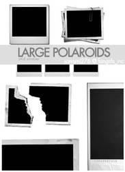 Large polaroid brushes by Sanami276