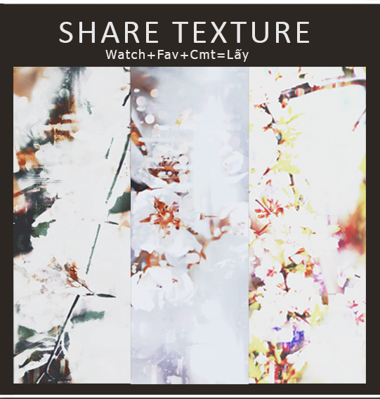 TexturebyGii#1 by quyhgiiao