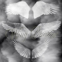 Wings - Photoshop Brushes by jmb-visual-arts