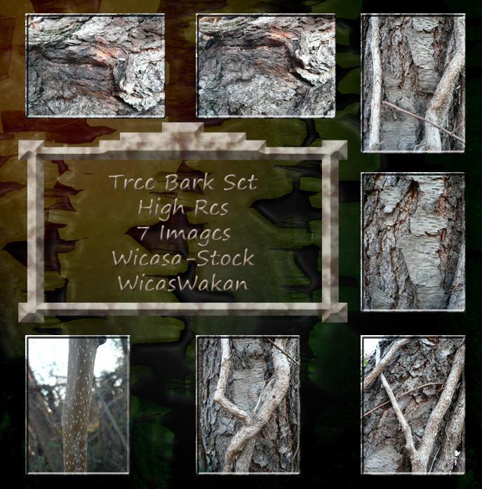 Tree bark set wicasa-stock by Wicasa-stock