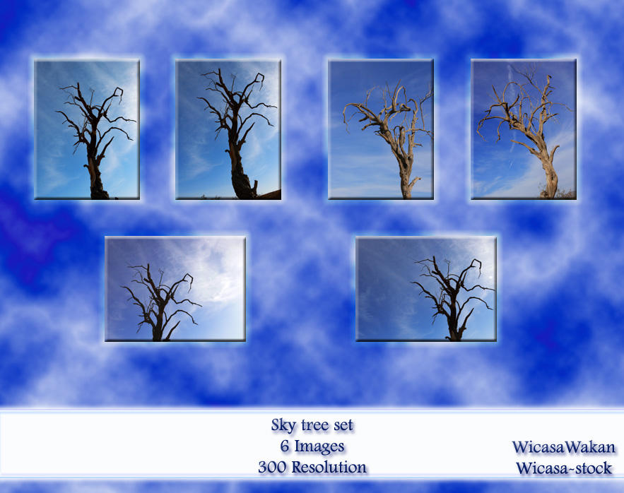 Sky Tree set by Wicasa-stock