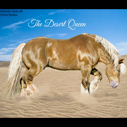 HEE Horse Avatar-The Desert Queen