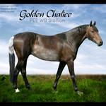 HEE Horse Avatar- Golden Chalice