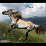 HEE Horse Avatar- Freedom Rider