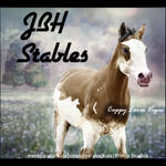 HEE Stable Avatar- JBH Stables
