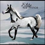 HEE Horse Avatar- Elite Ice Prince