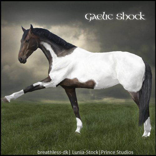 HEE Horse Avatar- Gaelic Shock