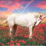 HEE Horse Avatar- Pion