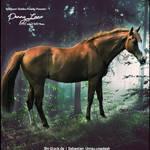 HEE Horse Avatar- Penny Lane
