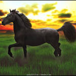HEE Horse Avatar - Stronger Together