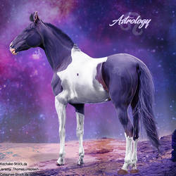 HEE Horse Avatar - Astrology