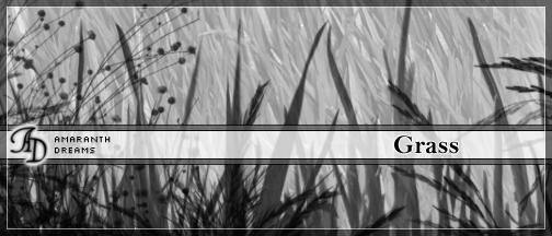 Grass by elestrial