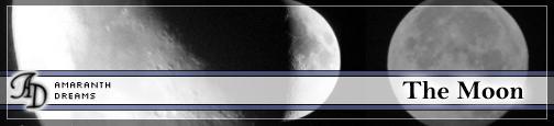 Moon 4 brushes