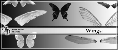 Wings by elestrial