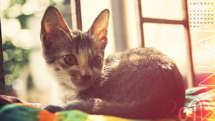 Despicable cat 2012 Calendar