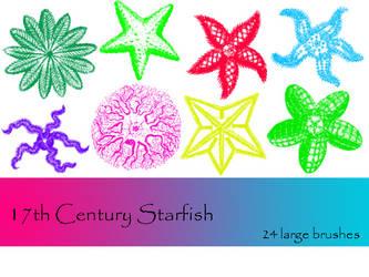 17th Century Starfish by TD-Brushes