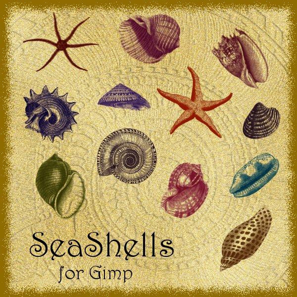 SeaShells Brushes for Gimp