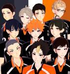 MMD x Haikyuu!! Karasuno Model Pack Download