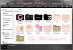 Princess Fashion Folders - Icons