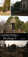Cemetery Package 3