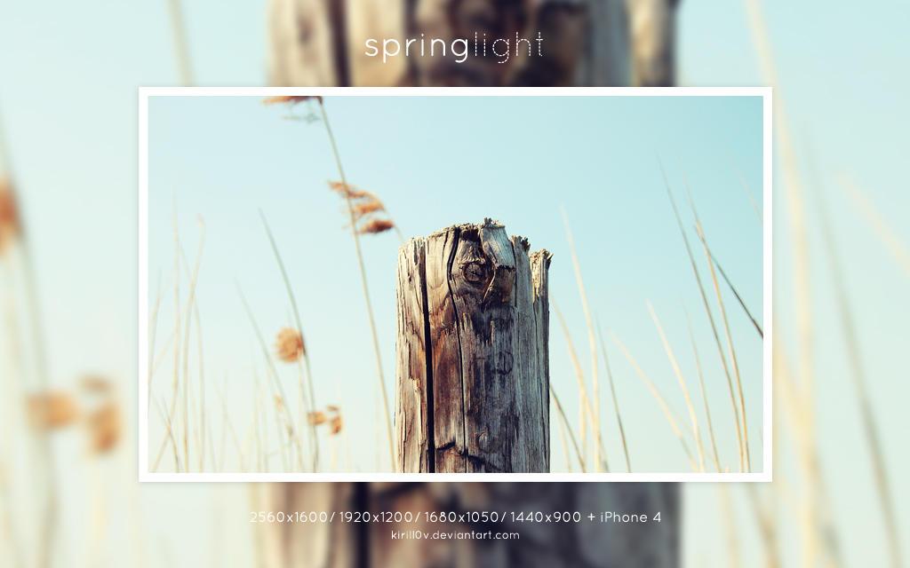 Springlight by kirill0v