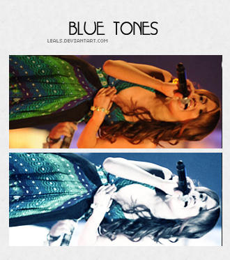 blue tones by leals