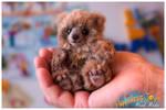 Cute handmade baby bear Koffi