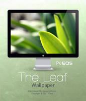 The Leaf Wallpaper by Fi3uR