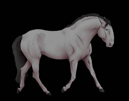 Free to Use base | Iberian Horse by litrikmoray