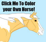 Color Your Own Horse