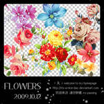 Flowers01_6P