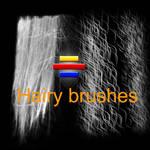 HairyBrushesKml006